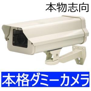 ダミーカメラ内蔵アイボリーハウジング  屋外用 LED点滅式 catF-EA711|wowsystem