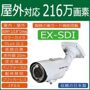 屋外用 赤外線LED搭載EX-SDIカメラ catSC-H2020|wowsystem