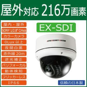 屋外用 赤外線LED搭載EX-SDIドームカメラ catSC-H2021|wowsystem