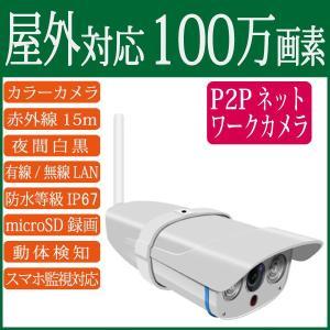 100万画素 屋外用 ドーム型ネットワークカメラ RCC-7100WP wowsystem