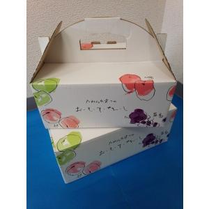 フルーツBOX おもてなし手提 大 1枚入|wrapping1