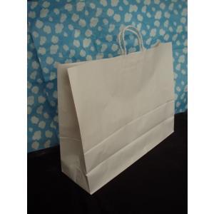 お得なまとめ買い 大型手提げ紙袋 白無地 60-2 100枚入|wrapping1