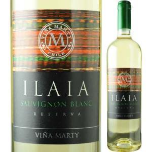 白ワイン イライア・ソーヴィニョン・ブラン ヴィニャ・マーティ 2014年 チリ セントラル・ヴァレー 辛口 750ml wine|wsommelier