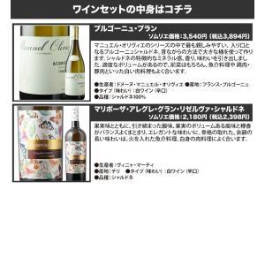 ワイン 白ワインセット 新世界・旧世界シャルドネ飲み比べ2本セット 第2弾 wine set|wsommelier|02
