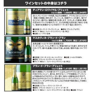 ワイン スパークリングワインセット 全部フランス産 辛口スパークリング5本セット  sparkling wine set|wsommelier|02