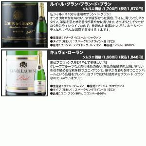 ワイン スパークリングワインセット 全部フランス産 辛口スパークリング5本セット  sparkling wine set|wsommelier|03