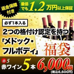ワイン「1」ソムリエ厳選お年玉福袋赤5本セット 送料無料 赤ワインセット wine