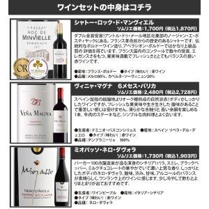 赤ワインセット ソムリエ人気赤ワイン6本セット 第28弾 送料無料 wine set|wsommelier|02