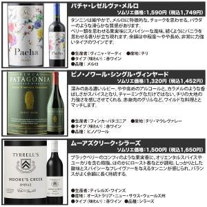 赤ワインセット ソムリエ人気赤ワイン6本セット 第28弾 送料無料 wine set|wsommelier|03