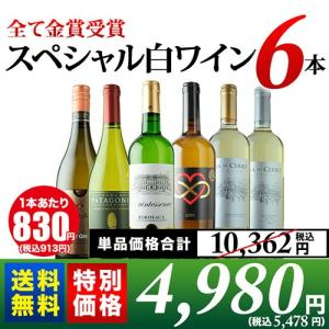 ワイン 白ワインセット 10周年記念特別セット!全て金賞受賞スペシャル白ワイン6本セット 送料無料 wine set|wsommelier