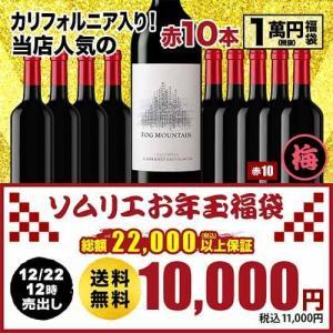 ワイン「8」ソムリエ究極お年玉福袋1万円・世界各国の赤ワイン10本セット 送料無料 赤ワインセット wine|wsommelier