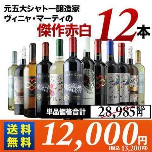 ワイン ワインセット ヴィニャ・マーティお試し12本 第5弾 送料無料 白5本&赤7本 wine set|wsommelier