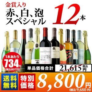 ワイン ワインセット 10周年記念特別セット!トリプル金賞入り 赤、白、泡スペシャルワイン12本セット 第2弾 送料無料 wine set wsommelier