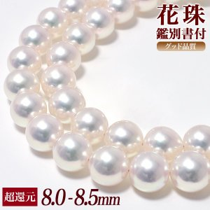 花珠真珠 ネックレス 8.0-8.5mm AAA グッドクオリティ花珠 花珠鑑別書付[n4]|wsp