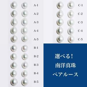 選べる 南洋白蝶真珠 パールルース(ペア) クールホワイト系 9mmUP A〜BAB〜C ドロップ (無穴)[n2] wsp