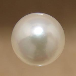 あこや本真珠 パールルース(シングル) ホワイト系 7.5-8.0mm CCB ラウンド (片穴があいています)[n3][4-418]|wsp
