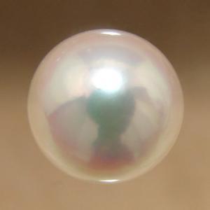 あこや本真珠ルースパールルース シングル  ホワイト系 8....