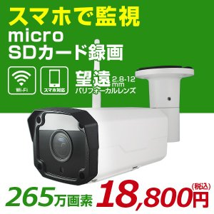 無線 望遠 Wi-Fi LAN IPネットワークカメラ 屋外用 赤外線カメラ 265万画素 1080...