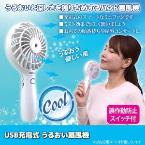 扇風機 ハンディ 充電式 USB 霧 熱中症対策   ミスト機能付き お肌の乾燥が気になるあなたも安心 持ち運び時の誤動作防止スイッチあり