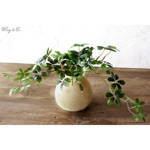 フェイクグリーン シュガーバイン 光触媒加工 ( 人工観葉植物 イミテーショングリーン )|wutty