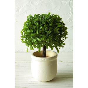 人工観葉植物 ミニPumpkinTree 光触媒加工 フェイクグリーン インテリア|wutty