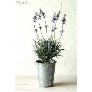 人工観葉植物 ラベンダー ブリキ鉢 ( おしゃれ フェイクグリーン 人工樹木 小型 リアル オブジェ インテリア )|wutty