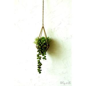 人工観葉植物 Succulent Wire Square S (B) ハンギング ( 多肉植物 フェイクグリーン 壁飾り 壁掛け ウォールグリーン )|wutty