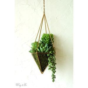 人工観葉植物 Succulent Wire Square L (A) ハンギング ( 多肉植物 フェイクグリーン 壁飾り 壁掛け ウォールグリーン )|wutty