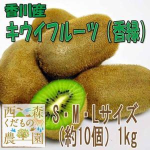 香川産 キウイフルーツ(香緑) 2kg[送料無料♪]