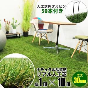 人工芝 1m×10m 押さえピンセット グラスピン ターフピン 50P 15cm 各種シート押さえ 杭 50本 ガーデン フェイクグリーンマット用|x-sports
