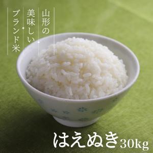 はえぬき 30kg 送料無料 お米 コメ 山形県産 令和2年産 精米 玄米 無洗米 xc-ski