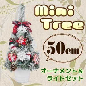 クリスマスツリー ミニツリー 50cm ワイドツリー スノー...