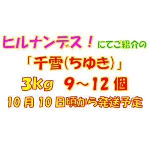 【数量限定・追加販売】ご家庭用「千雪(ちゆき)」小箱3kg|y-afc