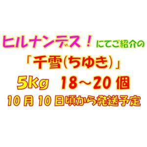 ご家庭用「千雪(ちゆき)」5kg|y-afc