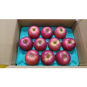 ご家庭用「サンつがる」小箱3kg|y-afc