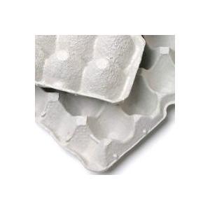 コオロギ、ミルワームのハウスに最適紙製の卵トレーです。卵40個分をセットできるくぼみがあります。コオ...