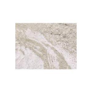 (海水魚)ばくとサンド(立上げ簡単サンド)パウダー 6リットル バクテリア付き ライブサンド