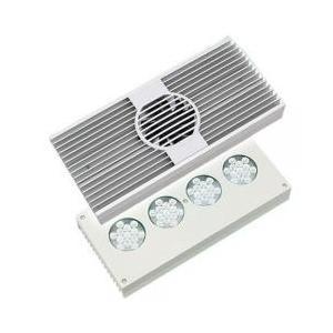 照明(アクア用品) / AI Hydra52HD(ハイドラ52HD) ホワイト 水槽用照明 LEDラ...