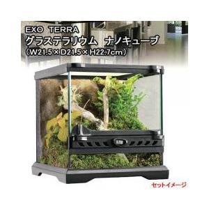 通気性に優れたガラス製ケージ小型の爬虫類・両生類飼育に最適なガラス製テラリウムケージです。日常のメン...