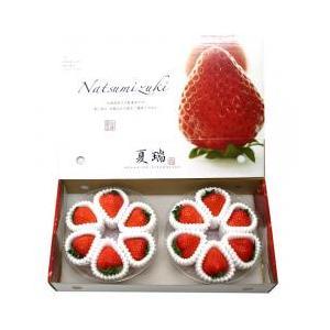 果物・フルーツ / 北海道より産地直送 高級いちご 夏瑞(なつみずき)約200g(6粒から7粒)×2...