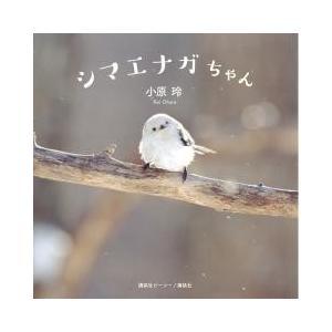 """いつでも""""雪の妖精""""に会える―。北海道で暮らすかわいい小鳥シマエナガの初写真集"""