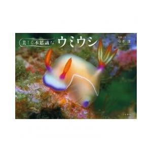 きれいでかわいいウミウシたちの最新写真集伊豆、越前、真鶴、八丈島などにいる新しい仲間も収録