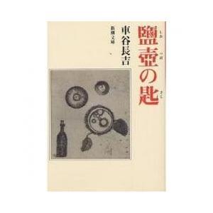 塩壺の匙/車谷長吉