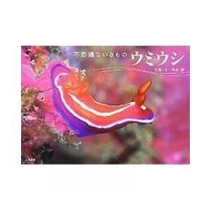 巻き貝の一種だが、模様と形状が複雑で、変異体が多く、しかも小さくて、種類も豊富。その色鮮やかさ、美し...