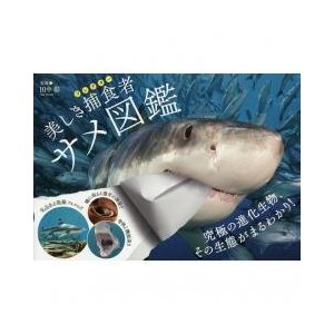 世界中の美麗で凛々しいサメをダイナミックなカラー写真で紹介捕食に秘められた各種の特徴を徹底解説種ごと...