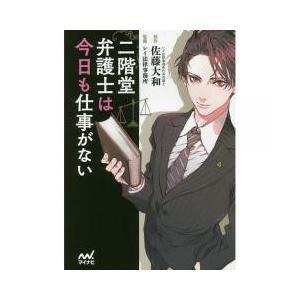日本の小説 / 二階堂弁護士は今日も仕事がない/佐藤大和/レイ法律事務所
