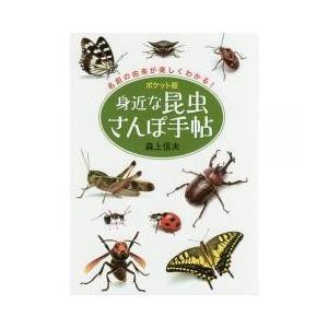 アウトドア / 身近な昆虫さんぽ手帖 ポケット版 名前の由来が楽しくわかる/森上信夫