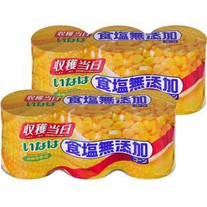 いなば 食塩無添加コーン3缶 2個(3缶パック×2個) 素材缶詰 素材缶詰