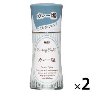 S&B スマートスパイス カレー塩 18g 324185 2本 塩・胡椒