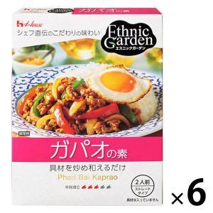 アウトレット/訳あり/わけあり ハウス食品 エスニックガーデン ガパオの素 1セット(80g×6個)...
